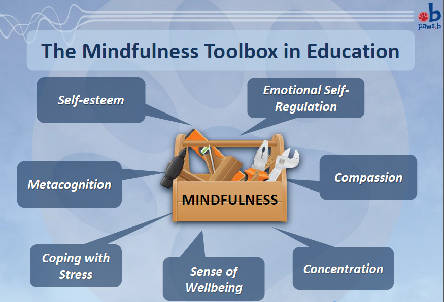 Mindfulness toolbox in Education